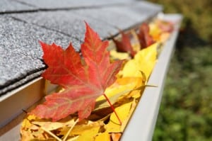 Selling Your Home Fall