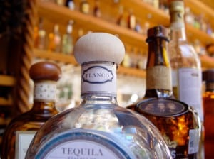 best tequila bars in calgary