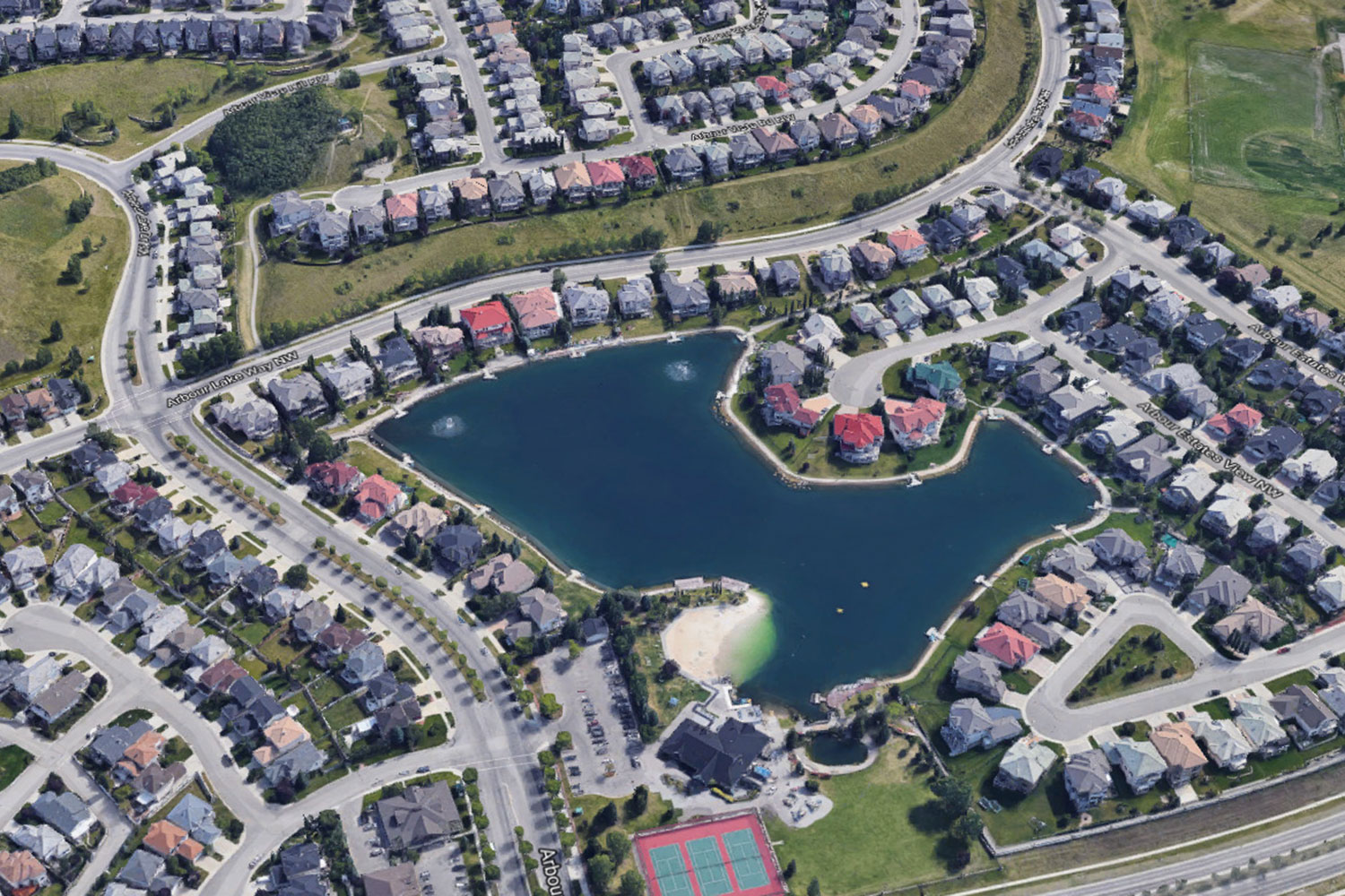 Arbour Lake Real Estate from Above