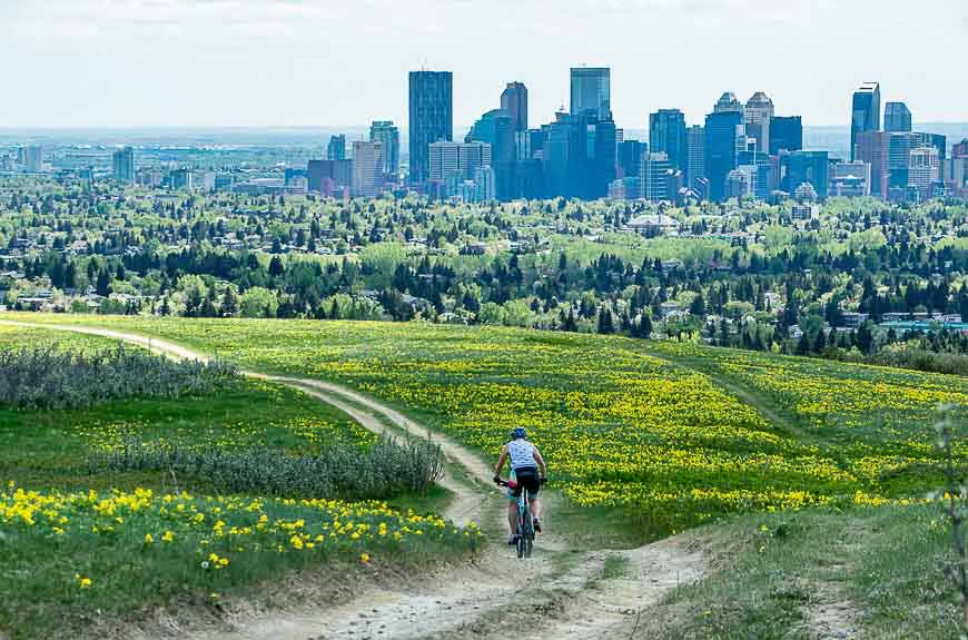 edgemont - best neighbourhoods for families in Calgary