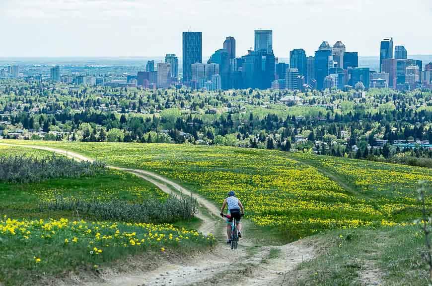 edgemont - best neighbourhoods for families in Calgary