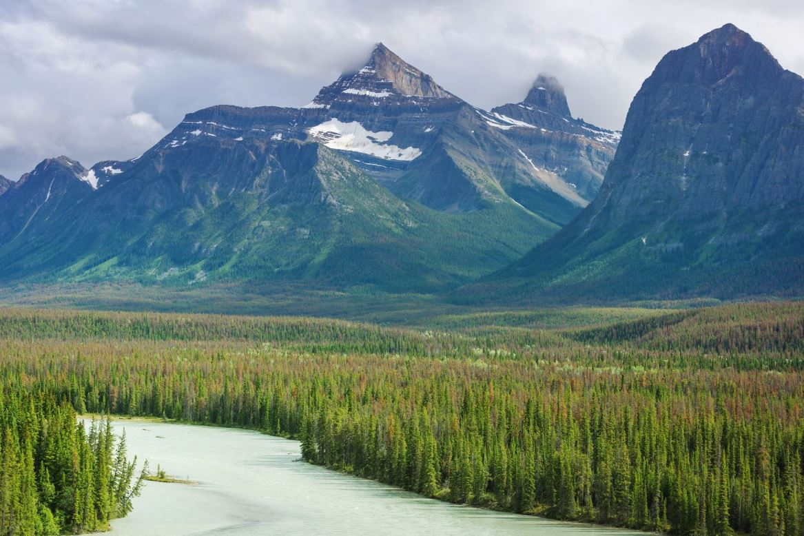 what is Calgary famous for? Nearby Hikes and Mountains